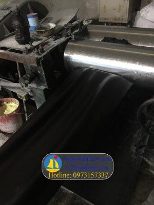 sản xuất gioăng củ tỏi (5)
