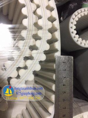 Dây PU 14M bản50 chu vi 3500mm màu trắng lõi thép, bước răng tròn cách nhau 14mm